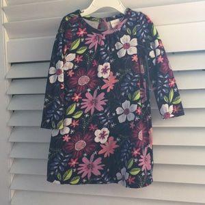 Gymboree 2T floral long sleeve dress